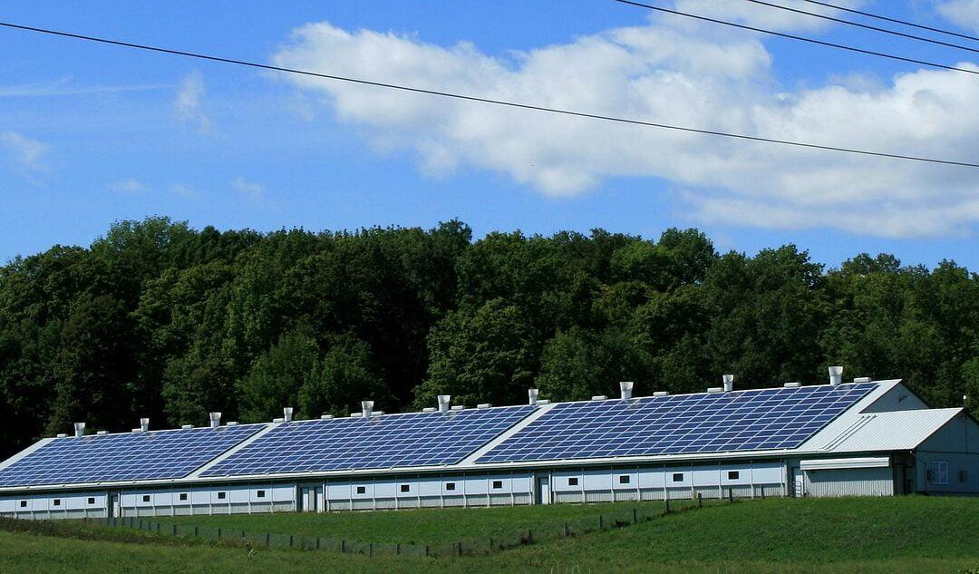 Solceller i 2020